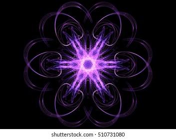 Computer fractal decorative colorful floral pattern on a black background