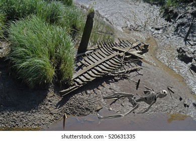 computer generated 3d illustration of a skeleton in the mud next to an old sunken boat