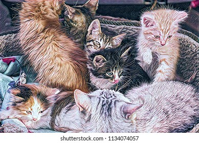Computer painting of funny fluffy pussycats