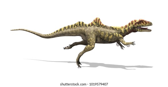 The concavenator was a dinosaur that lived during the early Cretaceous period - 3d render.