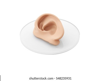 Concept of bioprinting of tissues and organs. 3D illustration of human ear, isolated on white background.