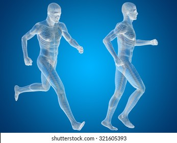 Concept or conceptual 3D human man or male skeleton anatomy transparent body over blue gradient background metaphor to medical, health, science, biology, bone, joint, healthy, structure or healthcare