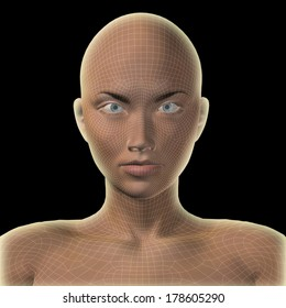 Concept or conceptual 3D wireframe human female head isolated on black background, metaphor to technology, cyborg, digital, virtual, avatar, model, science, fiction, future, mesh or abstract