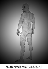 Concept or conceptual 3d wireframe male or man over black and white background as metaphor for anatomy, body, biology, medicine, muscle, mesh, muscular, anatomical, science, education, sport or mesh