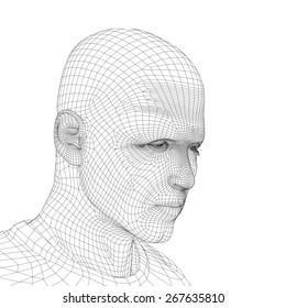 Concept or conceptual 3D wireframe young human male or man head isolated on background as metaphor for technology, cyborg, digital, virtual, avatar, model, science, fiction, future, mesh or abstract