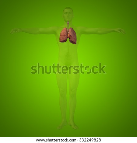 anatomical concept of disease