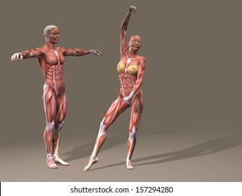 Illustration of Naked Man and Women Images, Stock Photos & Vectors