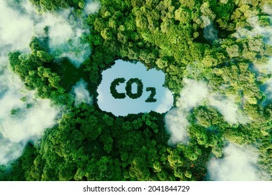 Concept depicting the issue of carbon dioxide emissions and its impact on nature in the form of a pond in the shape of a co2 symbol located in a lush forest. 3d rendering.