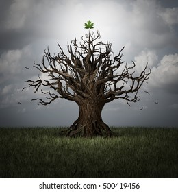 Concept of optimism as a tree in crisis with no leaves and one green leaf surviving as a business or psychological symbol of persistence and determination to have faith with 3D illustration elements.