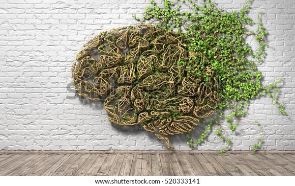 Concepto de pensamiento. La planta verde en forma de cerebro humano sobre un fondo blanco de pared de ladrillo y suelo de madera. El pensamiento estalla. Ilustración 3d