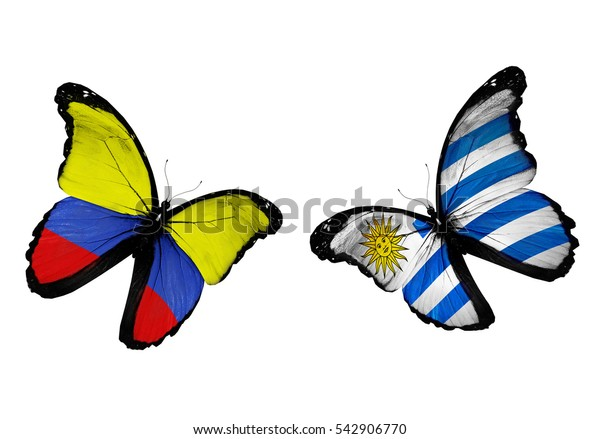 Concept - two butterflies with Colombia and Uruguay  flags flying