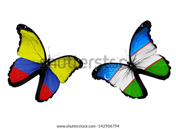 Concept - two butterflies with Colombia and Uzbekistan  flags flying