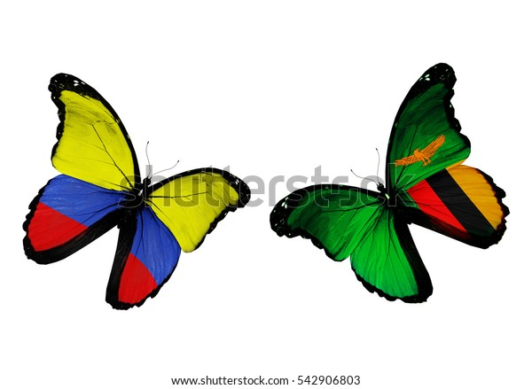 Concept - two butterflies with Colombia and Zambia flags flying