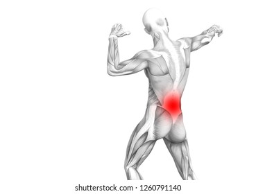 Conceptual back human anatomy with red hot spot inflammation articular joint pain or spine health care therapy or sport muscle concepts. 3D illustration man arthritis or bone sore osteoporosis disease