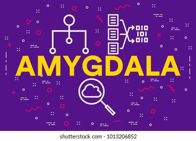 Conceptual business illustration with the words amygdala