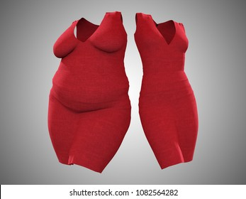 Conceptual fat overweight obese female dress outfit vs slim fit healthy body after weight loss or diet thin young woman on gray. A fitness, nutrition or fatness obesity health shape 3D illustration