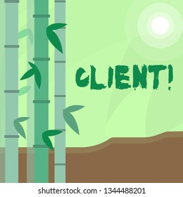 Conceptual hand writing showing Client. Business photo text Purchaser Customer Shopper User Patron Prospect Sharer Investor Buyer Colorful Set of Leafy Bamboo and Moon or Sun with Round Beam.