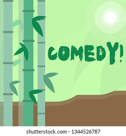 Conceptual hand writing showing Comedy. Business photo text Fun Humor Satire Sitcom Hilarity Joking Entertainment Laughing Colorful Set of Leafy Bamboo and Moon or Sun with Round Beam.