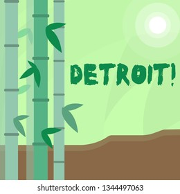 Conceptual hand writing showing Detroit. Business photo text City in the United States of America Capital of Michigan Motown Colorful Set of Leafy Bamboo and Moon or Sun with Round Beam.