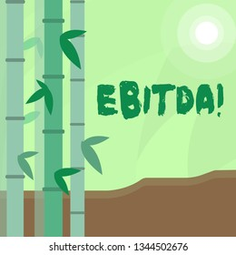 Conceptual hand writing showing Ebitda. Business photo text Earnings Before Interest Taxes Depreciation Amortization Abbreviation Colorful Set of Leafy Bamboo and Moon or Sun with Round Beam.