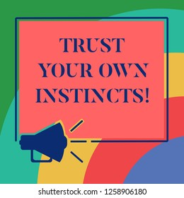 Conceptual hand writing showing Trust Your Own Instincts. Business photo showcasing Intuitive follow demonstratingal feelings confidence Megaphone Sound icon Square Loudspeaker Text Space photo.