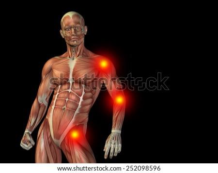 Conceptual Human Man Anatomy Upper Body Stock Illustration 252098596