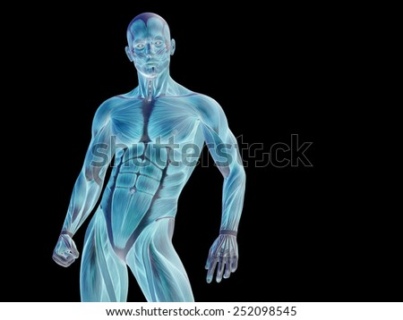 Conceptual Strong Human Man 3 D Anatomy Stock Illustration 252098545 ...