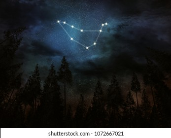 Constellation Capricorn. Night sky. Stars. Night in the forest. Zodiac Capricorn
