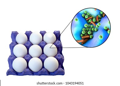 Contamination of eggs with bacteria, medical concept for transmission of food infections through eggs, such as salmonellosis, listeriosis and other. 3D illustration