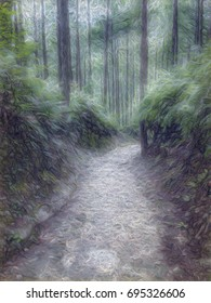 Conte Drawing; Trail at the World Heritage Forest Kumano Kodo, Wakayama Prefecture, Japan, May, 2012