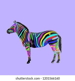 Contemporary art collage. Colorful zebra.