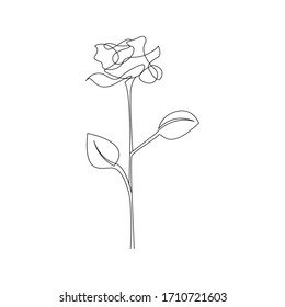 Continuous Line Drawing. One Line Rose Drawing. Minimalist Floral Design. Rose Contour Drawing. Raster copy.