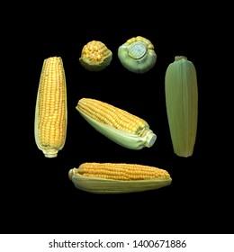 Corn black background multiple angles 3d render