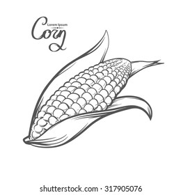corn, outline style, for menu, simple illustration