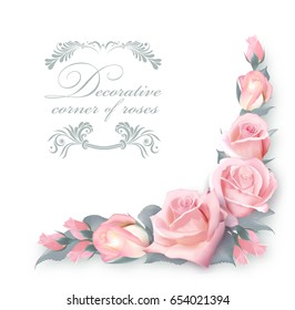 Corner background with pink roses and green leaves.