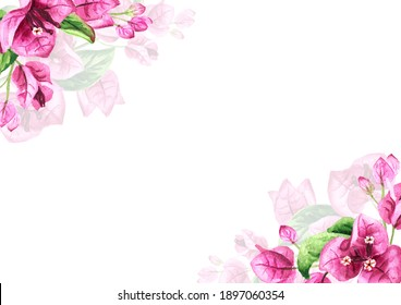 Corners from Pink Bougainvillea branch with flowers and leaves. Hand drawn watercolor illustration, isolated on white background