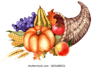 Cornucopia. Basket with fruits and vegetables. Harvest Festival, Thanksgiving. Pumpkin, grapes, corn, apple, tomato and wheat ear. Watercolor illustration. Isolated on white background. Hand-drawn.