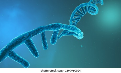 Coronavirus RNA strand. Medical illustration. 3D rendering