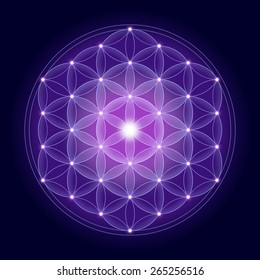 Cosmic Flower of Life with stars on dark blue background, a spiritual symbol and Sacred Geometry since ancient times.