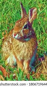 Cottontail rabbit in grass, illustration