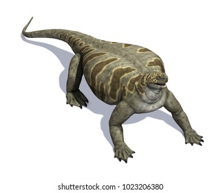 The Cotylorhynchus was a dinosaur that lived during the Permian Period - 3d render.