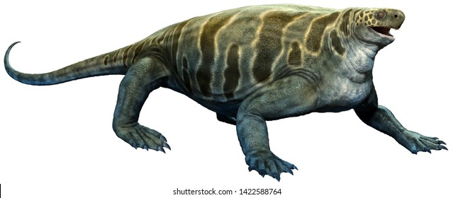Cotylorhynchus from the Permian era 3D illustration