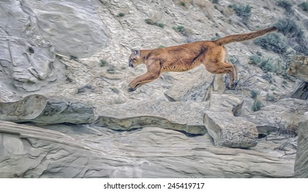 Cougar leaping in rocks