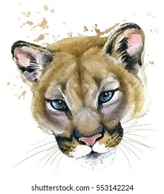 cougar watercolor illustration. Mountain lion