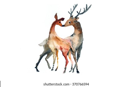 Couple Deer watercolor illustration on paper