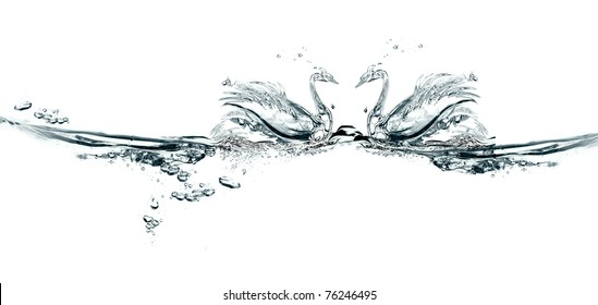 couple of swans made of water