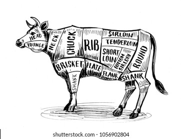 Cow butcher`s chart. Ink black and white illustration