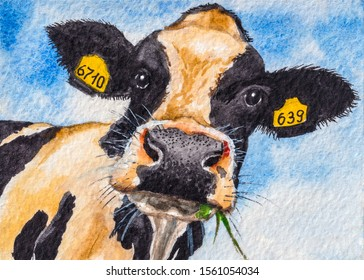 Cow Face Painting Images Stock Photos Vectors Shutterstock