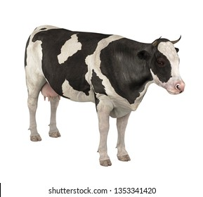 Cow Isolated. 3D rendering