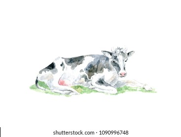 Cow on the grass.Farm animals.Watercolor hand drawn illustration.White background.